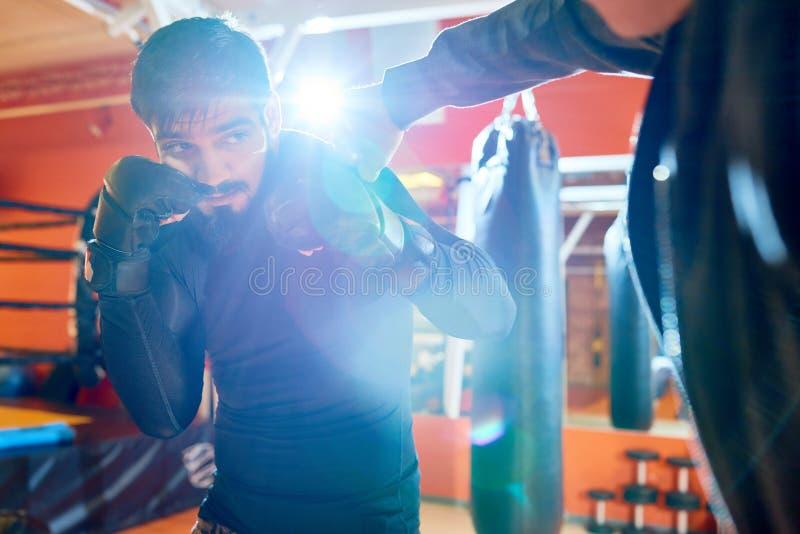Trainer und Boxer im Sparring stockfotos