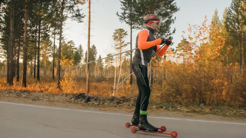 Training an athlete on the roller skaters. Biathlon ride on the roller skis with ski poles, in the helmet. Autumn. Workout. Roller sport. Adult man riding on stock photography