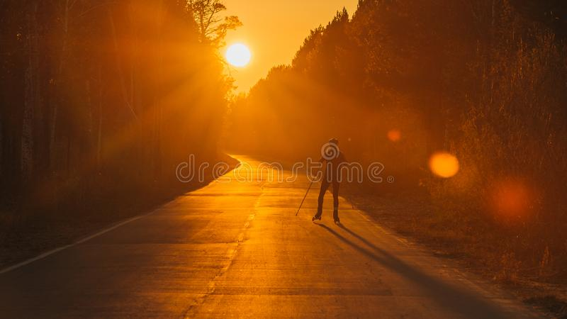 Training an athlete on the roller skaters. Biathlon ride on the roller skis with ski poles, in the helmet. Beautiful. Sunset silhouette. Autumn workout. Roller stock image