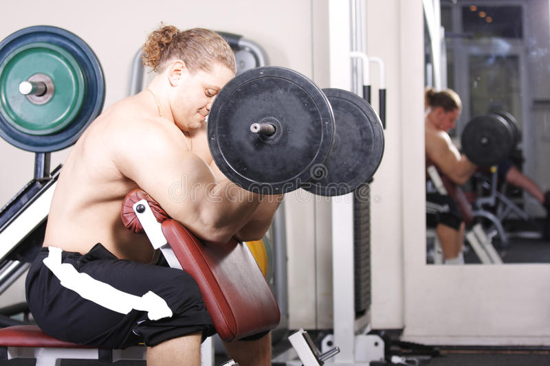 Training biceps with heavy weight. Big guy training biceps with heavy weight in gym stock photos