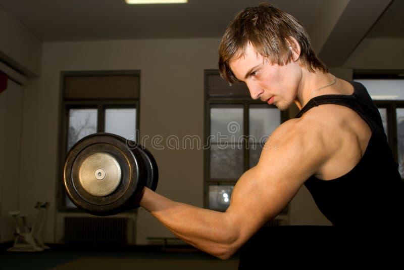 Training Of Bodybuilder Stock Photo