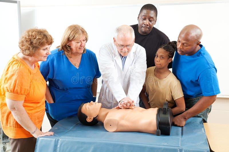 Training der ersten Hilfe für Erwachsene lizenzfreies stockbild