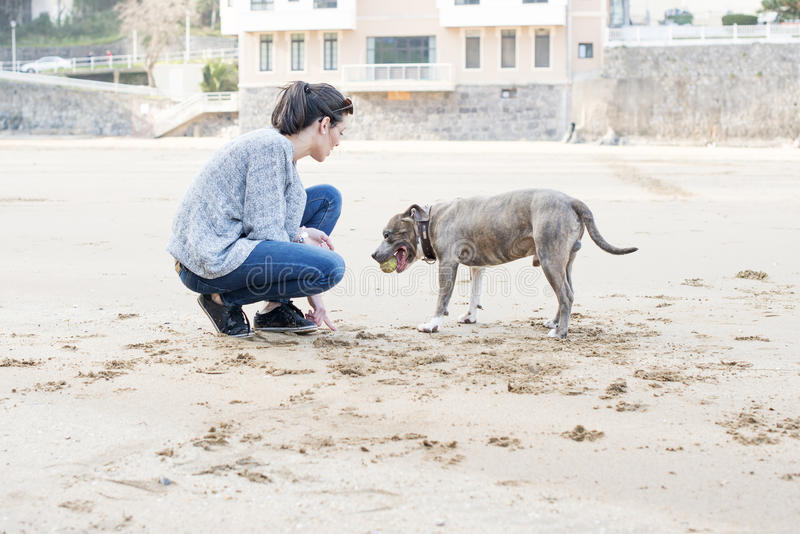 Training der jungen Frau Ihres Hundes im Strand. stockbilder
