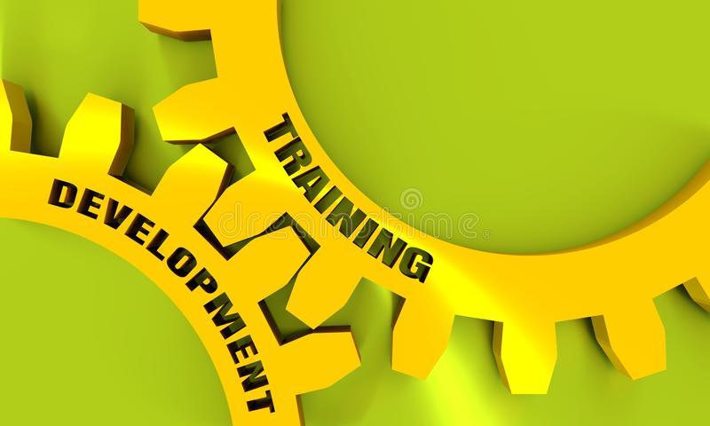 Training and Development text on the Gears. vector illustration