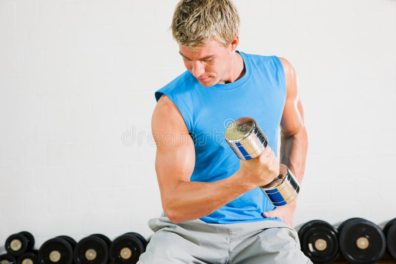 Download Training with dumbbells stock image. Image of attractive - 12223473