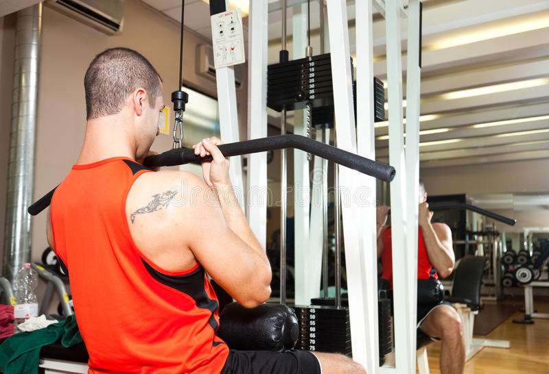 Download Training in the gym stock image. Image of sport, sports - 26708209