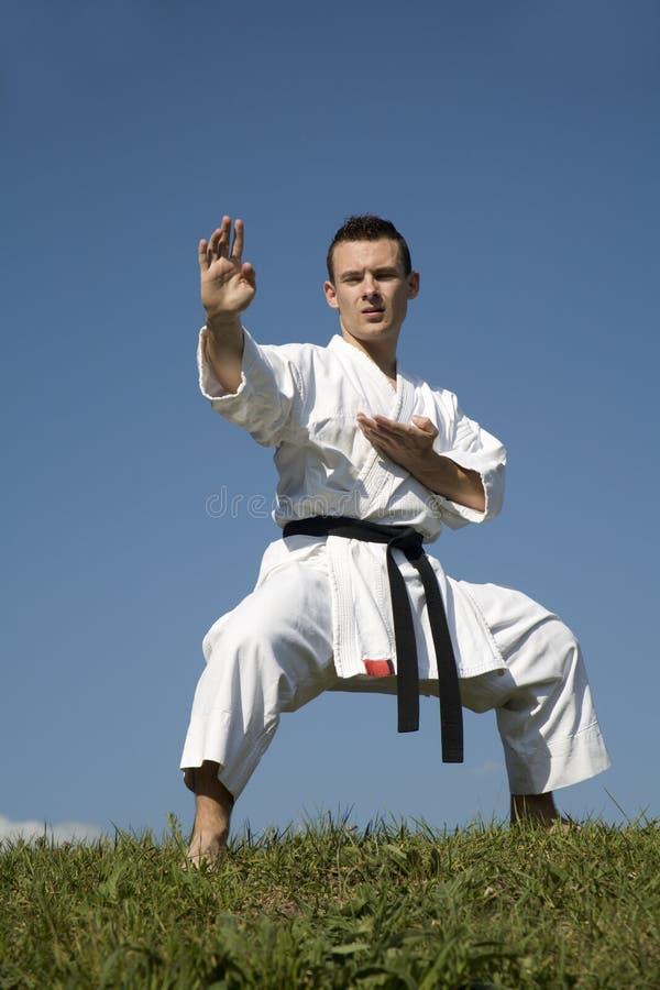 Download Training Of Karate Champion - Kata Stock Photo - Image: 10960620