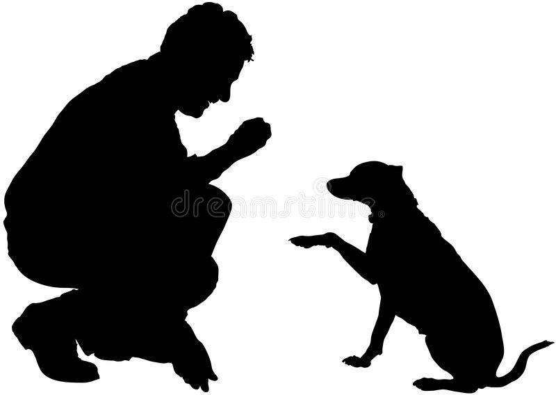 Download Training Obedience Stock Photography - Image: 3527272