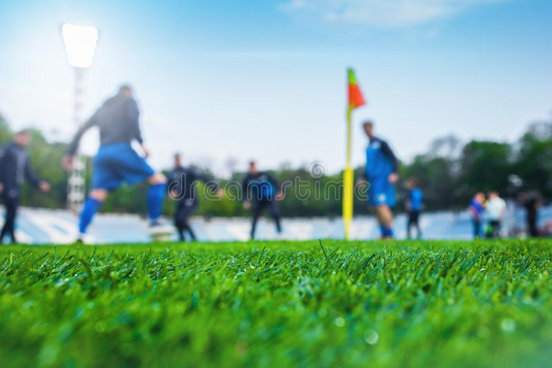 Training soccer players on football stadium. Green grass at fore. Ground. Defocused. In the lens shines backlight soffit royalty free stock photography