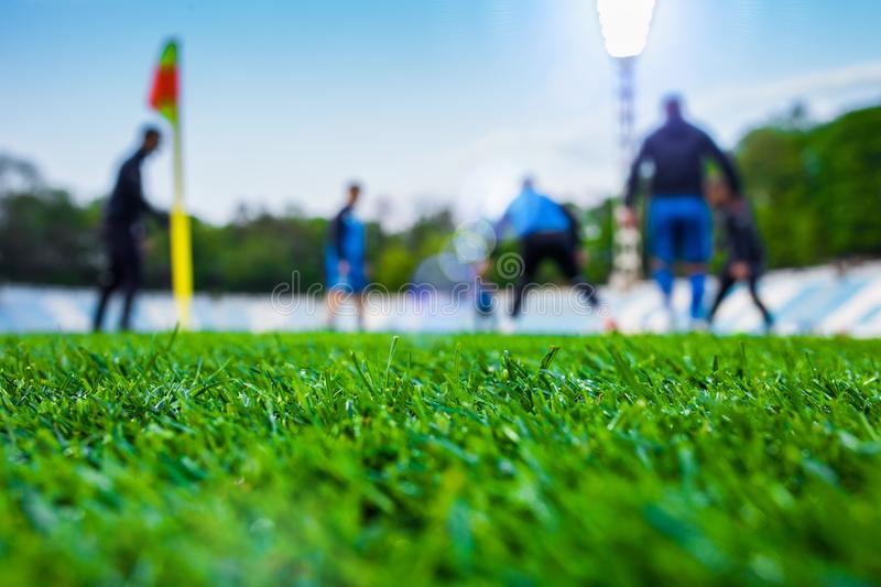Training soccer players on football stadium. Green grass at fore. Ground. Deed. In the lens shines backlight soffit. clothing taking leisure flag hobbies royalty free stock photos