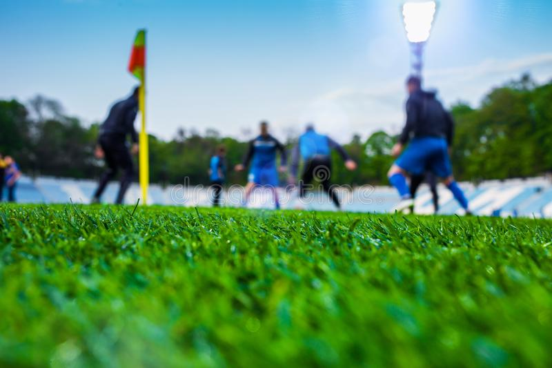 Training soccer players on football stadium. Green grass at fore. Ground. Deed. In the lens shines backlight soffit. clothing taking leisure flag hobbies royalty free stock photo
