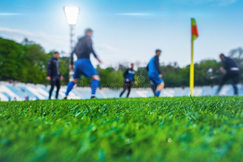 Training soccer players on football stadium. Green grass at fore. Ground. Defocused. In the lens shines backlight soffit royalty free stock photo