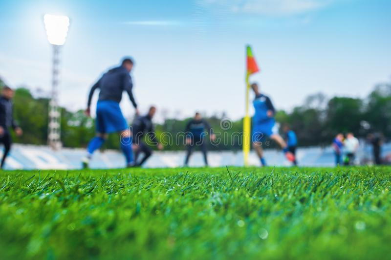 Training soccer players on football stadium. Green grass at fore. Ground. Defocused. In the lens shines backlight soffit royalty free stock photos
