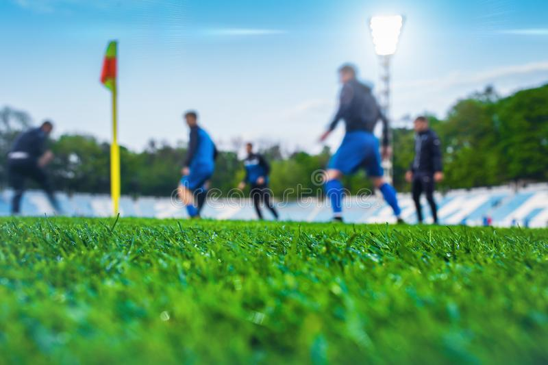 Training soccer players on football stadium. Green grass at fore. Ground. Defocused. In the lens shines backlight soffit royalty free stock images