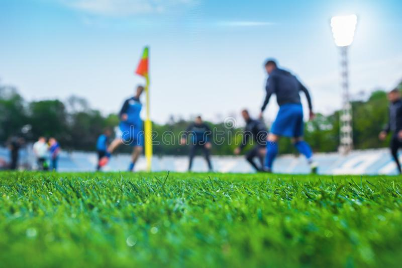 Training soccer players on football stadium. Green grass at fore. Ground. Defocused. In the lens shines backlight soffit stock photos