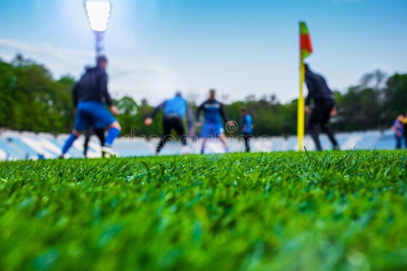 Training soccer players on football stadium. Green grass at fore. Ground. Defocused. In the lens shines backlight soffit. clothing taking leisure flag hobbies stock images