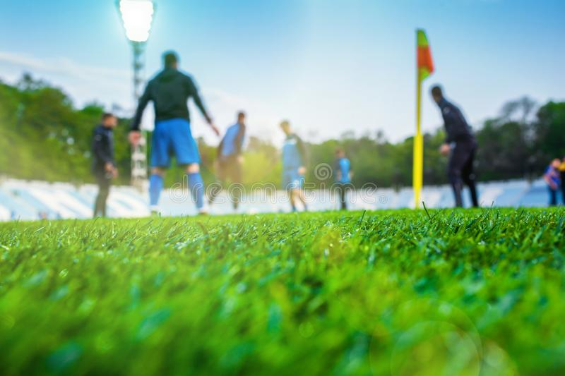 Training soccer players on football stadium. Green grass at foreground. Defocused. In the lens shines backlight soffit stock photos