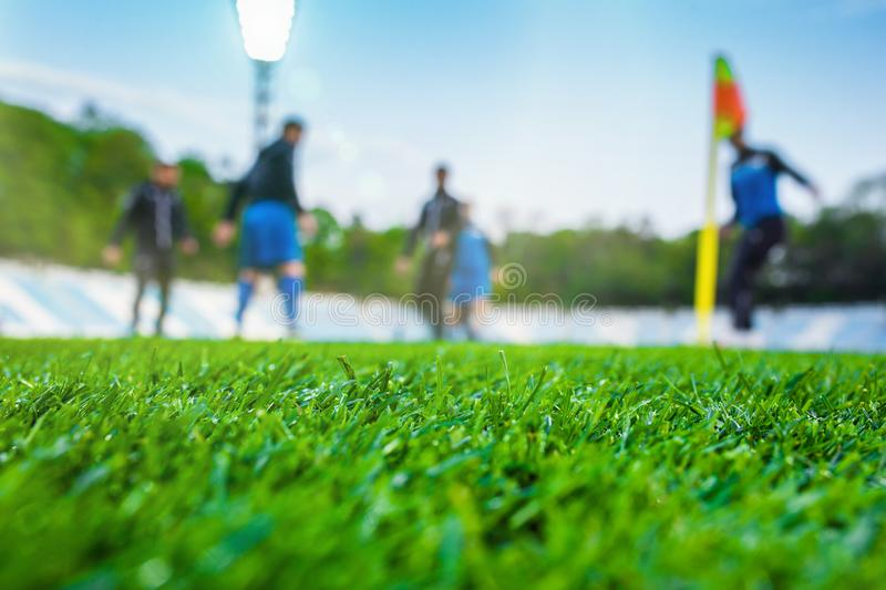 Training soccer players on football stadium. Green grass at foreground. Defocused. In the lens shines backlight soffit stock photo