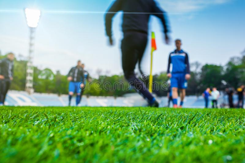 Training soccer players on football stadium. Green grass at foreground. Defocused. In the lens shines backlight soffit royalty free stock photos