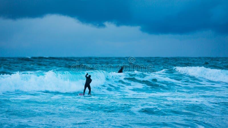 Trainingssurfer im kalten Wasser von Lofotens lizenzfreie stockfotografie