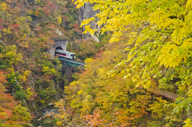 Trains from cave naruko gorge royalty free stock images