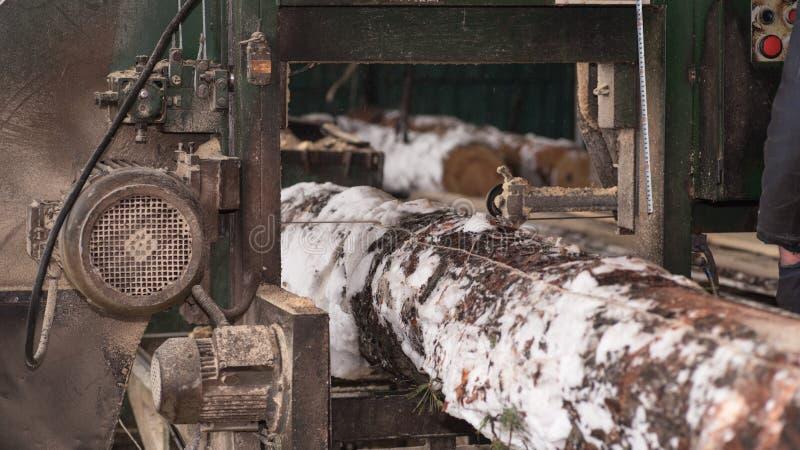 traitement de bois La coupe ouvre une session les conseils Dans le processus d'hiver un arbre photos stock