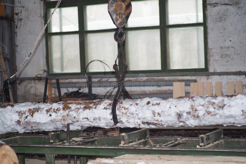 traitement de bois La coupe ouvre une session les conseils Dans le processus d'hiver un arbre photographie stock