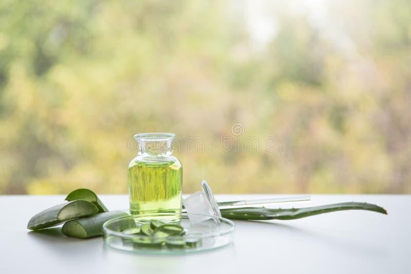 Traitements de station thermale de Vera d'aloès sur la table en bois blanche Concept de relaxation de massage de thérapie de soin image libre de droits