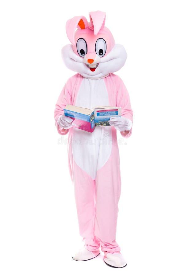 Traje de tamaño natural del conejo con el libro en el fondo blanco El conejito de pascua lee el libro, consigue una educación, in imagen de archivo libre de regalías