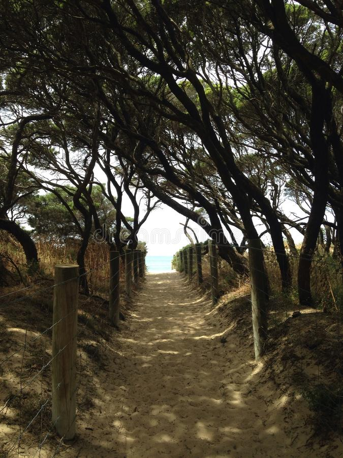 Trajeto à praia fotos de stock royalty free