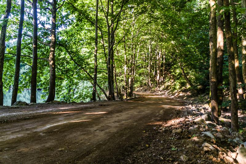 Trajeto através de Forest Of Tesvikiye Village - a Turquia foto de stock royalty free