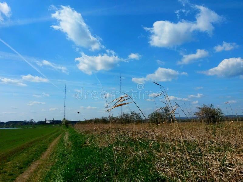 Trajeto através de um prado gramíneo, ao longo de uma correia da grama seca, de uns mastros distantes de negligência do transmiss imagens de stock