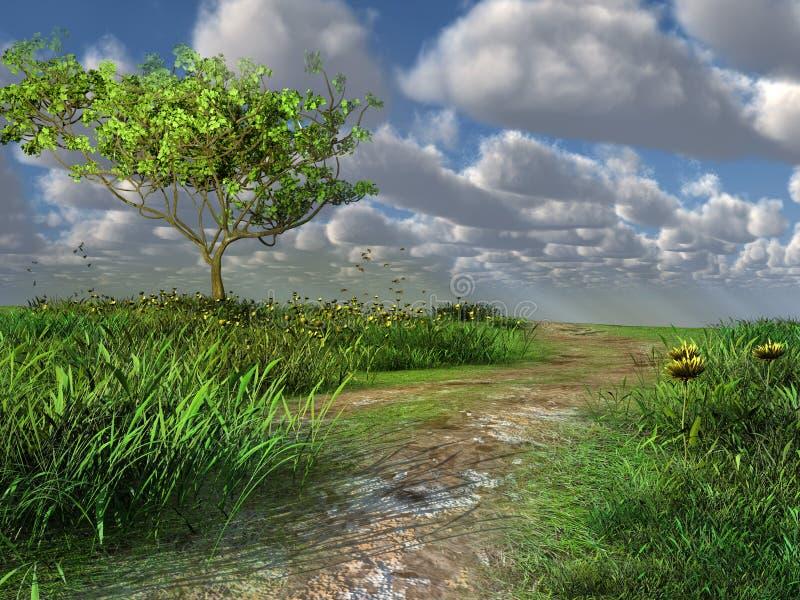 Trajeto através do prado verde ilustração do vetor