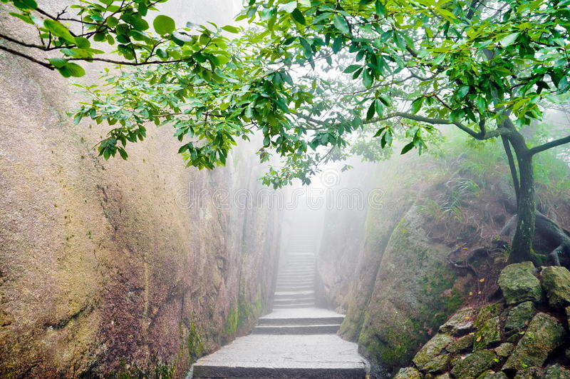 Trajeto chinês do zen da montanha foto de stock royalty free