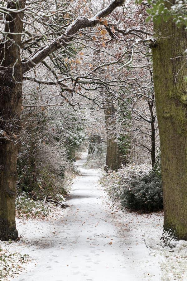 Trajeto coberto de neve em um parque imagens de stock