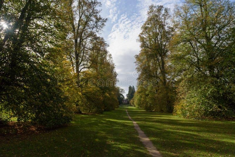Trajeto da avenida do cal com a casa no parque de Nowton no outono foto de stock