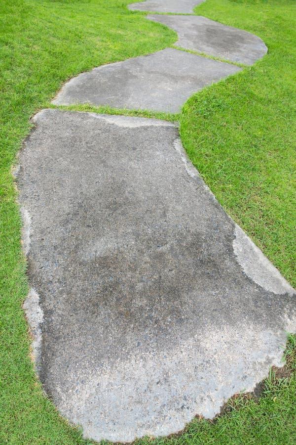 Trajeto da caminhada do assoalho do cimento com grama verde fotografia de stock