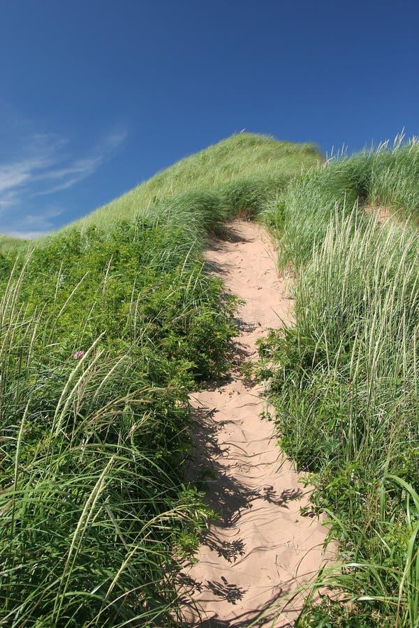 Trajeto da duna de areia imagem de stock royalty free