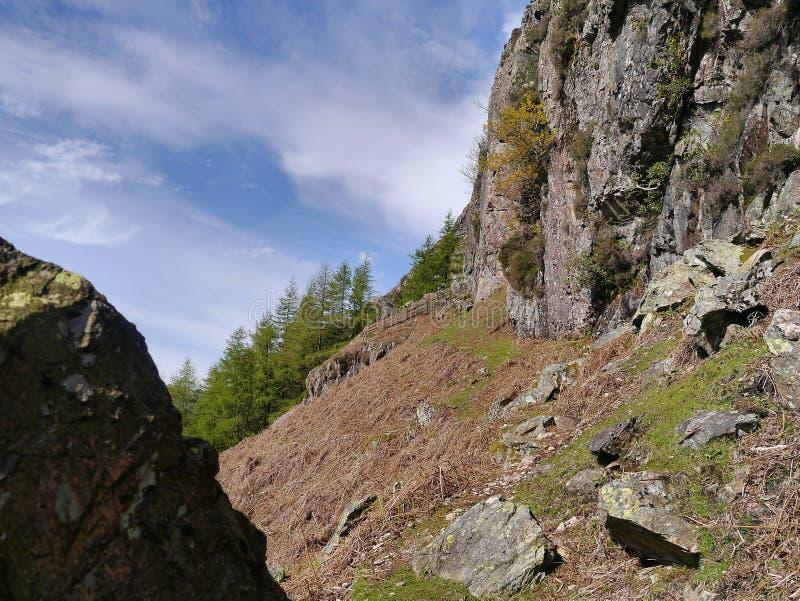 Trajeto da grama para montanhistas de rocha fotografia de stock royalty free