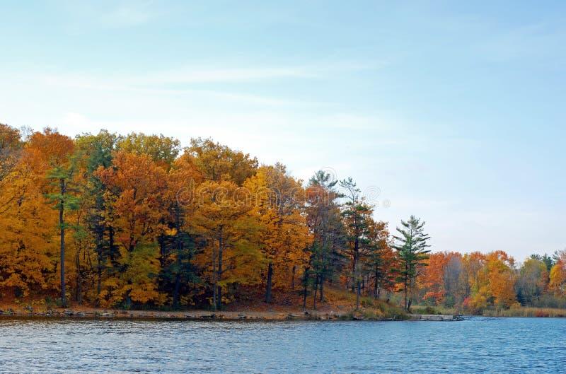 Trajeto da natureza ao lado de um lago imagem de stock
