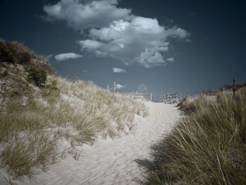 Trajeto da praia fotografia de stock