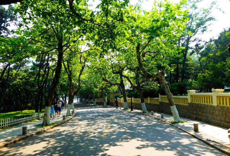 Trajeto das passagens de Qingdao oito grande imagem de stock royalty free