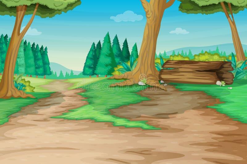 Trajeto de floresta ilustração royalty free