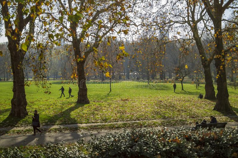 Trajeto de Hyde Park atrav?s da grama verde e ?rvores em Londres fotografia de stock royalty free