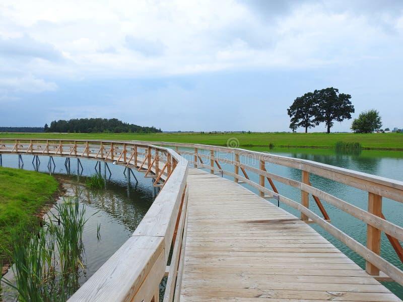Trajeto de madeira sobre a água do lago no parque de Naisiai, Lituânia foto de stock