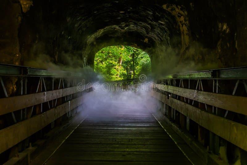 Trajeto de passeio com efeito assustador do fumo, caverna de vista assustador do Dia das Bruxas, antro enevoado, cenário do horro imagem de stock royalty free