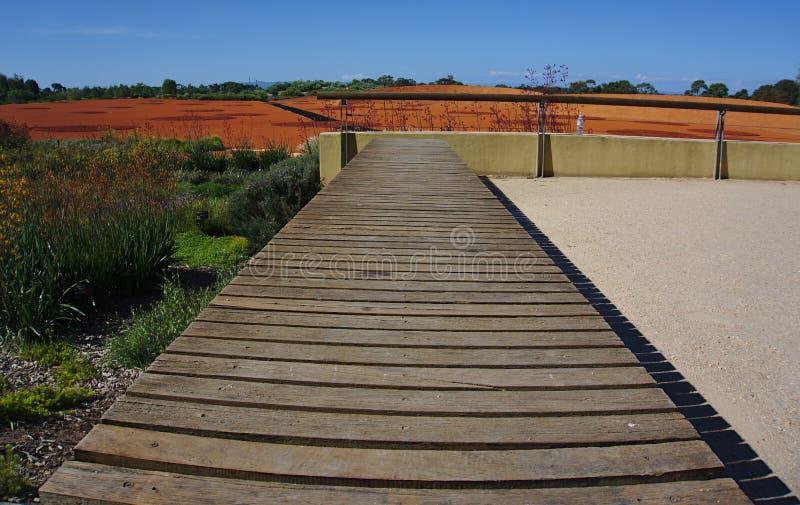 Trajeto de passeio de madeira no parque público imagens de stock royalty free