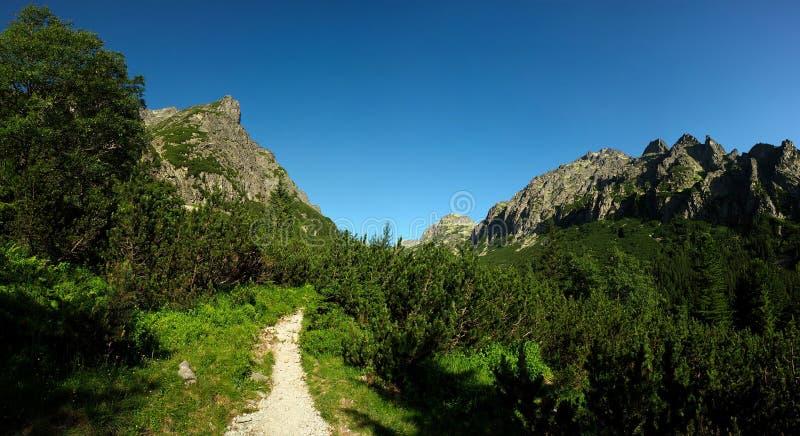 Trajeto de passeio nas montanhas imagens de stock royalty free
