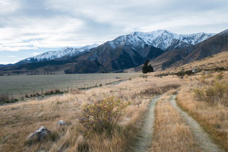 Trajeto de passeio no monte no dia nebuloso, Nova Zelândia do castelo foto de stock