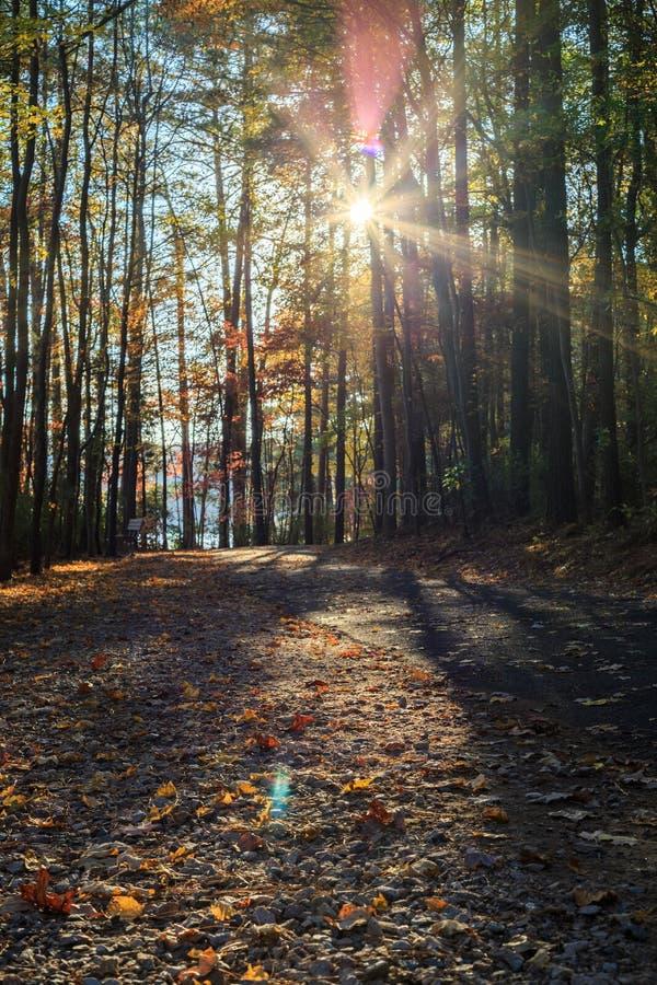 Trajeto de passeio no parque de johnson do lago de Raleigh, NC fotos de stock royalty free